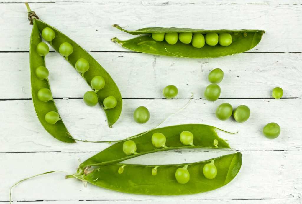 Mazarea este un aliment perfect pentru dieta Rina ziua 1 fiind bogat in proteine vegetale