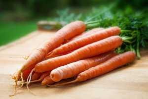 vreau sa slabesc cu morcovi