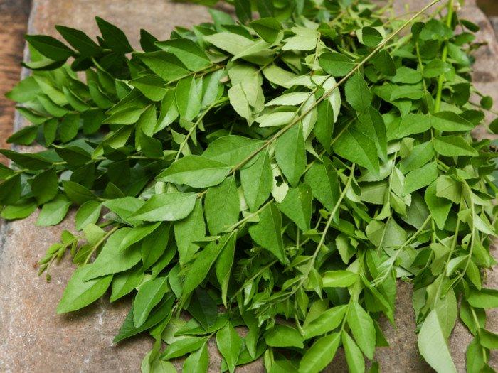 frunze de neem - Cum se poate trata varicela acasă